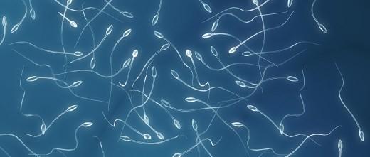 Dấu hiệu nhận biết tinh trùng loãng 1
