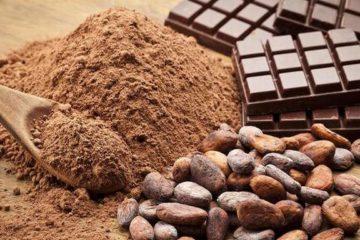 cacao-yeu-sinh-ly-nen-an