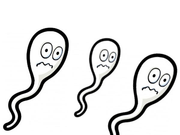 Chữa tinh trùng yếu như nào hiệu quả? 1