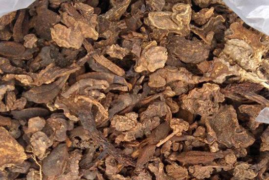 2. Cách ngâm rượu nấm ngọc cẩu khô: 1