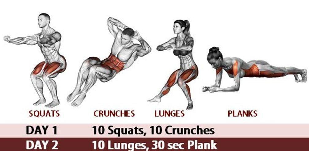 Động tác squats và planks 1